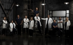 Grey's_anatomy_cast_photo_season_9